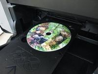 CDケースに入れる時は、剥したリケイ紙の裏面を粘着面に貼り付けて入れると、そのまま入れて飾ることが出来ます。